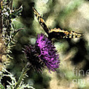 The Butterfly I Art Print