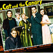 The Cat And The Canary, Front To Back Art Print by Everett