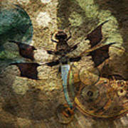The Dharma Of The Dragonfly Art Print