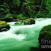 The Dosewallups River  Art Print