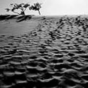 The Dunes At Dusk Art Print