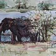 The Elelphant Art Print