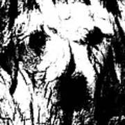The Face In The Tree High Contrast Art Print