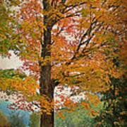 The Fay Tree Art Print