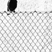 The Fence That Follows Art Print