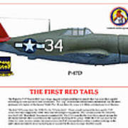 The First  Red Tails Art Print