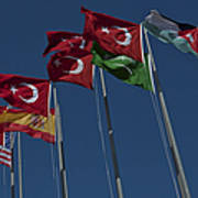 The Flags Of The Participating Nations Art Print