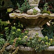 The Fountain Painterly Art Print by Ernie Echols