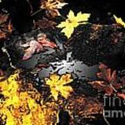 The Golden Leaves Art Print