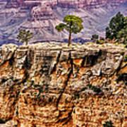 The Grand Canyon Iv Art Print