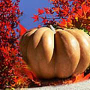 The Great Pumpkin And October Colors Art Print