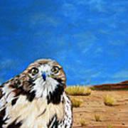 The Hawk Art Print