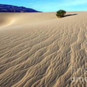 The Magic Of Sand Art Print