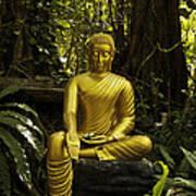The Mercy Of Buddha Art Print