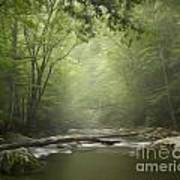 The Middle Prong River In Fog Art Print