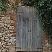 The Old Door Art Print