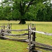 The Old Fence Art Print by Valia Bradshaw