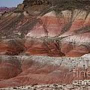 The Painted Desert  8018 Art Print