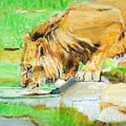 The Paws That Refreshes Art Print by Judy Kay