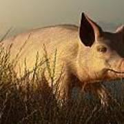 The Pink Pig Art Print