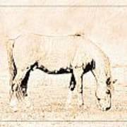 The Pony Art Print
