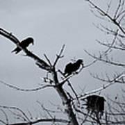 The Raven Tree Art Print