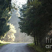 The Road Out Of The Conservation Area Art Print