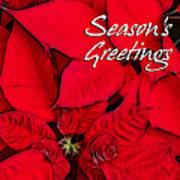 The Season's Velvet Touch Art Print