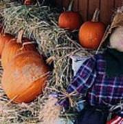 The Shy Pumpkin-man Art Print
