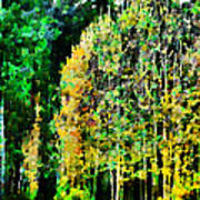 The Speckled Trees Art Print
