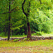 The Stone Wall Before The Cabin Art Print