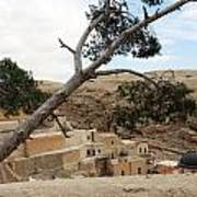 The Tree In Desert Art Print