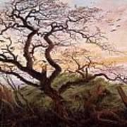 The Tree Of Crows Art Print by Caspar David Friedrich