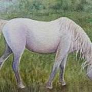 The White Horse Art Print by Kerri Ligatich