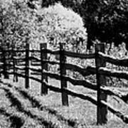 The Wooden Fence Art Print