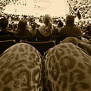 The World Thru Leopard Printed Pants Art Print