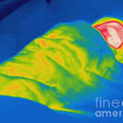 Thermogram Of A Child Sleeping Art Print