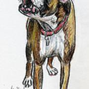 This Boxer Can Sing Art Print by Deborah Willard