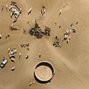 This Saharan Well Attracts Livestock Art Print