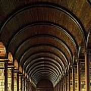 Thomas Burgh Library, Trinity College Art Print