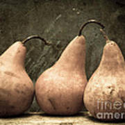 Three Pear Art Print by Edward Fielding