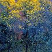 Three Thin Autumnal Trees In Front Of Art Print