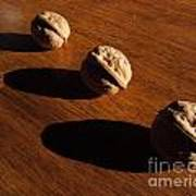 Three Walnuts Photograph Art Print