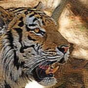 Tiger De Art Print by Ernie Echols