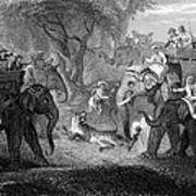 Tiger Hunt, 19th Century Art Print