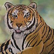 Tiger Art Print by Shadrach Ensor