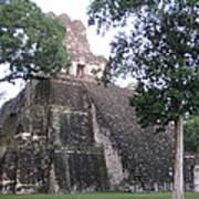 Tikal And Its Pyramids Art Print