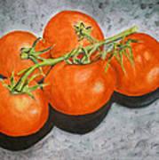 Tomatoes Art Print by Linda Pope