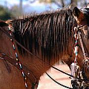 Tombstone Horse Art Print