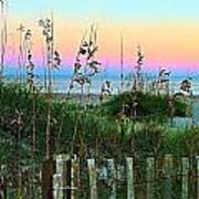 Topsail Island Dunes And Sand Fence Art Print